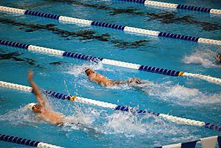 Senior State Swimming July 2008 096