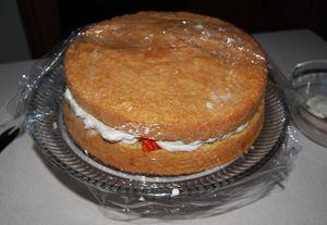 Berry cake 002