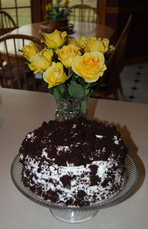 Cake twd feb 17 010