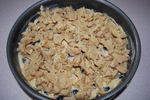 Twd blueberry crumb cake 020