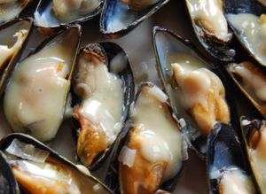 Whisk mussels in cream sauce 021