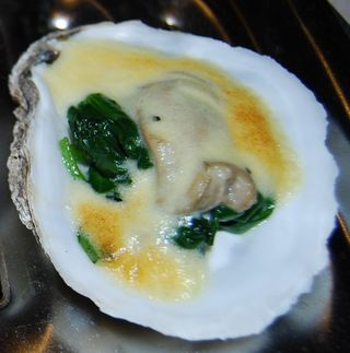 Whisk oysters 033