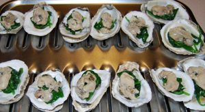 Whisk oysters 014