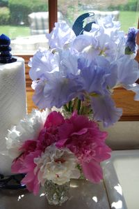 Bagels and peonies 051