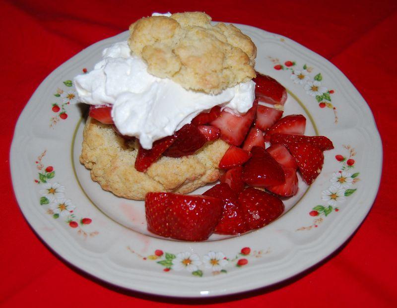 TWD shortcakes 008