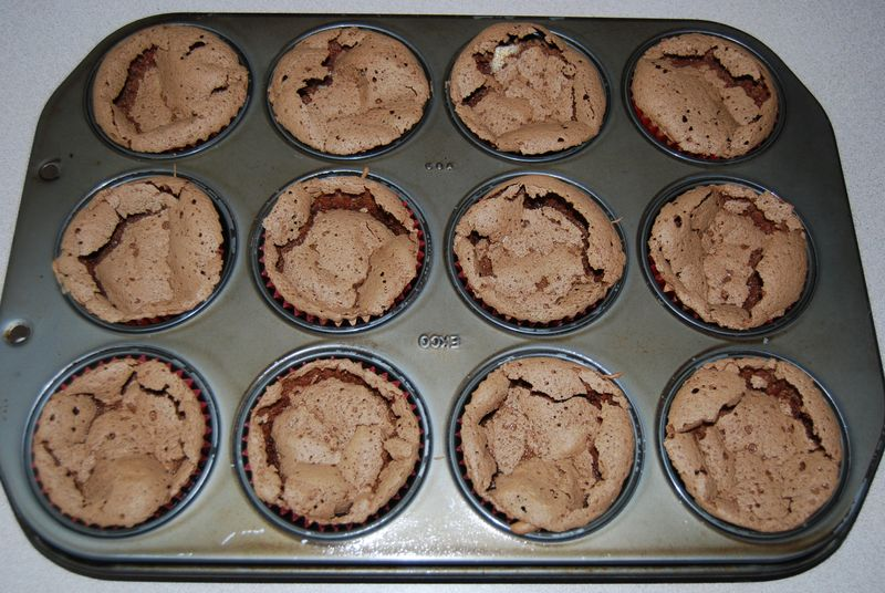 MSC Flourless Cupcakes 002