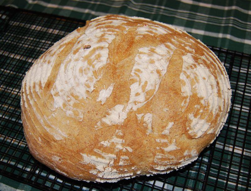 BBA Sourdough Bread 005
