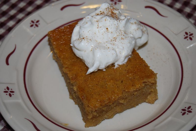 Persimmon Pudding 020