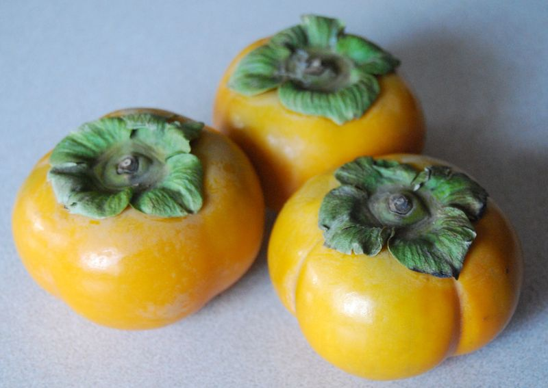 Nick's signature and Persimmons 013